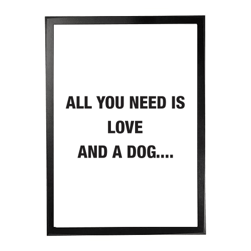 All you need - Dog 1
