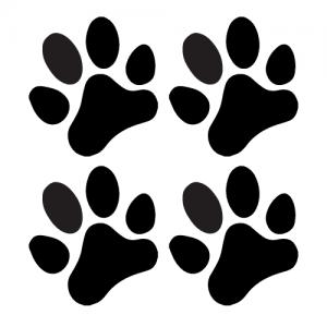 Hundepoter 13